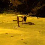 Beach Study, 2012, Sriwhana Spong